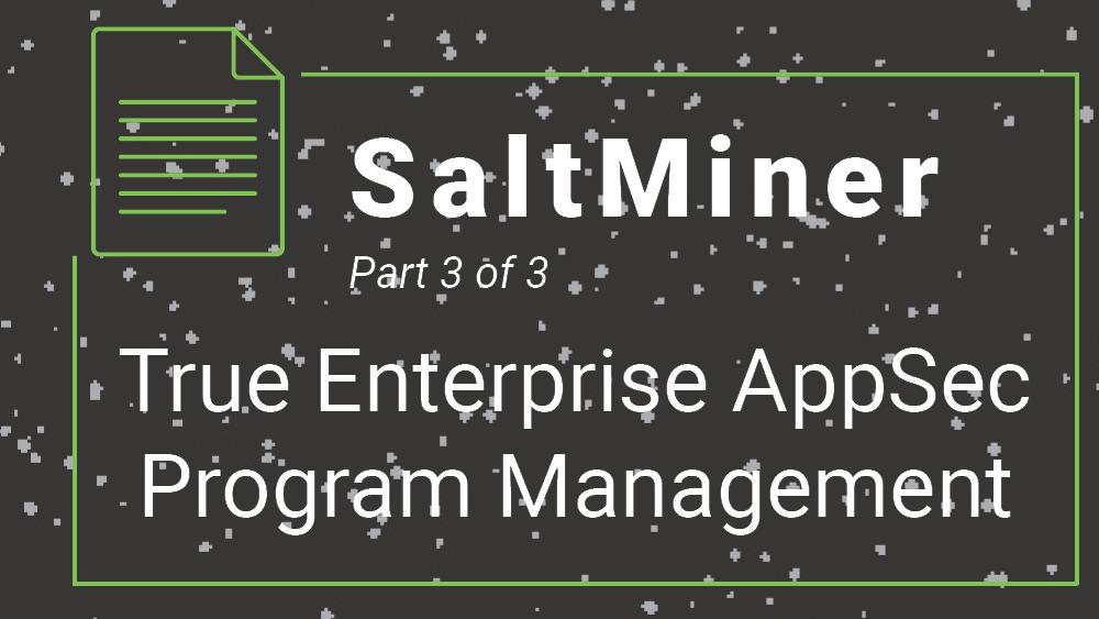 SaltMiner-True Enterprise AppSec Program Management